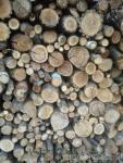 Drewno opa�owe SUCHE