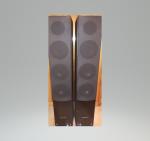 kolumny pure acoustics