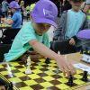 170609-szachy-023